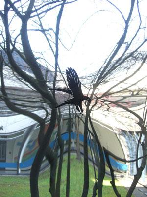 vogel glasscheibe