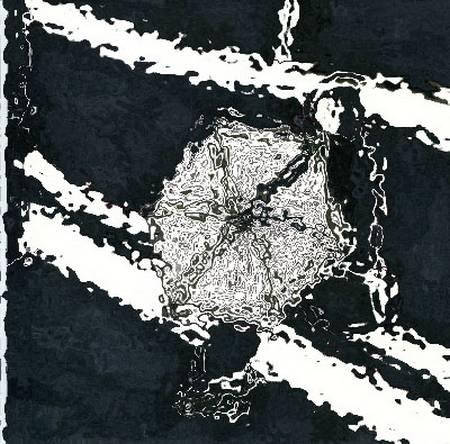 blackwhiteschirm13