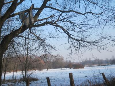 schnee und eis 028