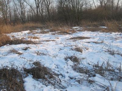 schnee und eis 038