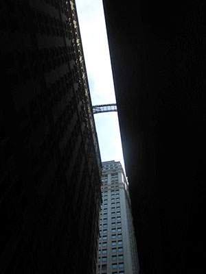 new york 2014 1850